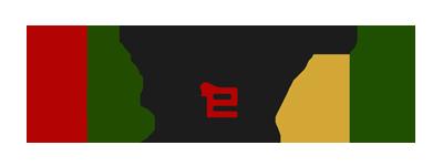 aleir_logo.png